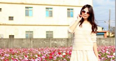 ★新竹★新埔普羅旺斯玫瑰莊園,包棟過年樂