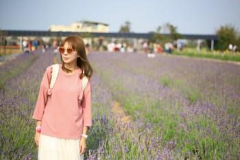 ★桃園★觀音向陽農場,紫色薰衣草花海美極了