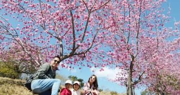 ★南投★清境藝家原民宿,清境農場櫻花祭、合歡石門山步道3日遊