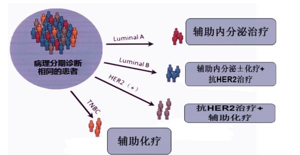 乳腺癌分子分型知多少?