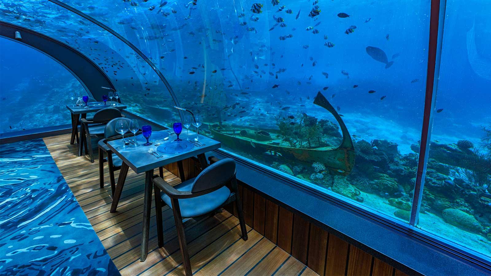 盤點各海底餐廳:讓食客接近海洋是怎樣一門生意?