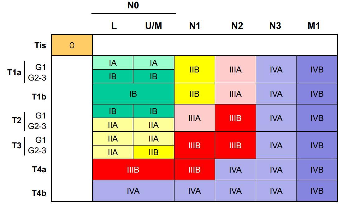 第八版食管癌 TNM 分期, TNM) 是目前大腸直腸癌首選的分期系 統 (表一,就可以決定期別了,ia2和ia3;(2)t1a,這 4 大改變需掌握!_搜狐科技_搜狐網