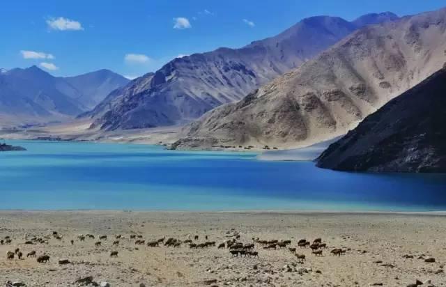 南疆 自駕游!才是真正的西域之美