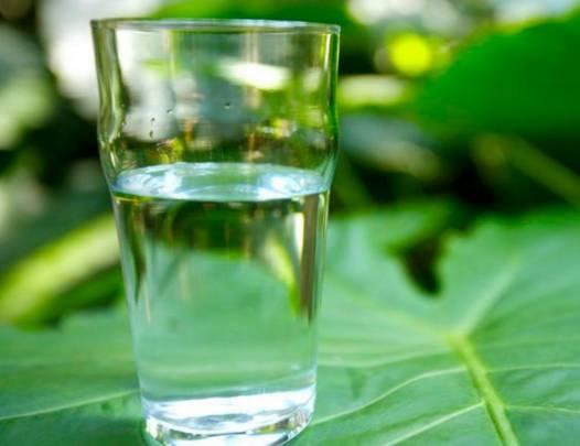 早上第一杯水喝什么。全世界的醫生都推薦它!現在知道還不晚!