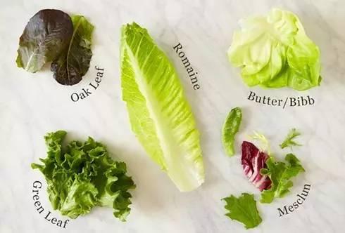 這些沙拉顏值擔當。其實都叫生菜!