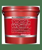 SCITEC 100% Whey Protein Professional 5000g