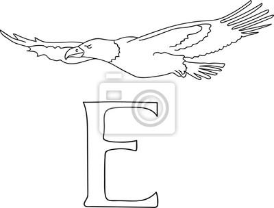 Fliegende Möwe Malvorlage - Best Ausmabilder 2020