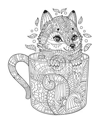 Ausmalbilder Für Erwachsene Fuchs Batavusprorace