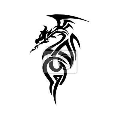 Drachen Tattoo Zeichnung