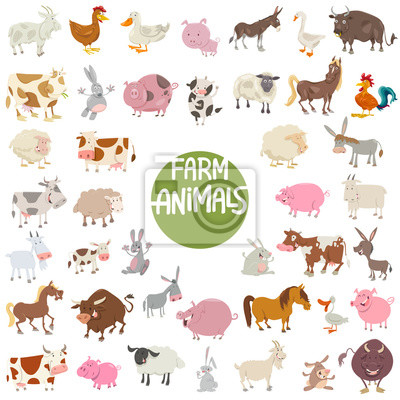 cuadro animales granja caracteres