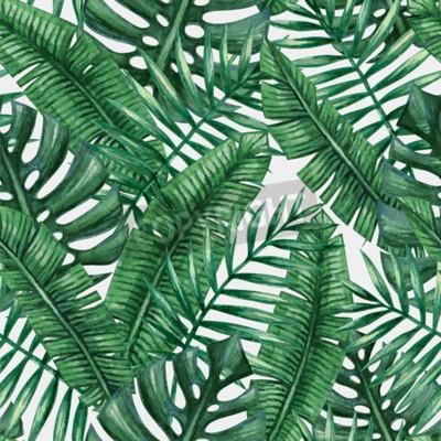 feuille de palmier tropical aquarelle avec motifs transparents images myloview