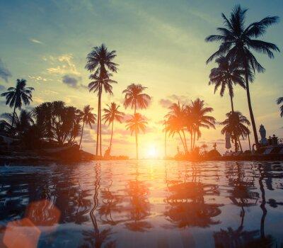 incroyable coucher de soleil sur la mer plage avec palmier images myloview