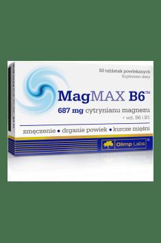 MagMax B6