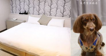 高雄寵物友善住宿》友亭生活旅店。簡單舒適又平價,可攜帶寵物入住