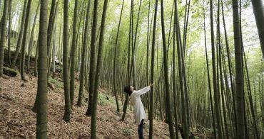 南投竹山大鞍療癒之森,彰化二水泰山攀岩招集令兩條路線醬玩