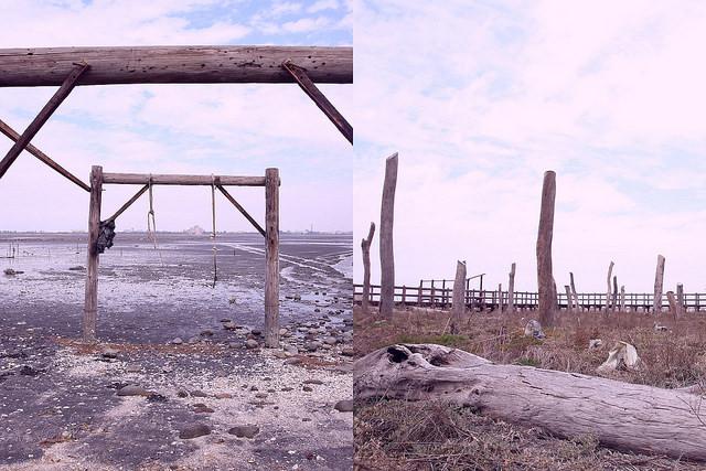 彰化福興景點,福寶濕地.漂流木景觀裝置藝術