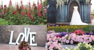 彰化員林景點》琉璃仙境。當夢想中的新娘+南區公園蜀葵花爆炸開彷佛置身愛麗絲仙境。