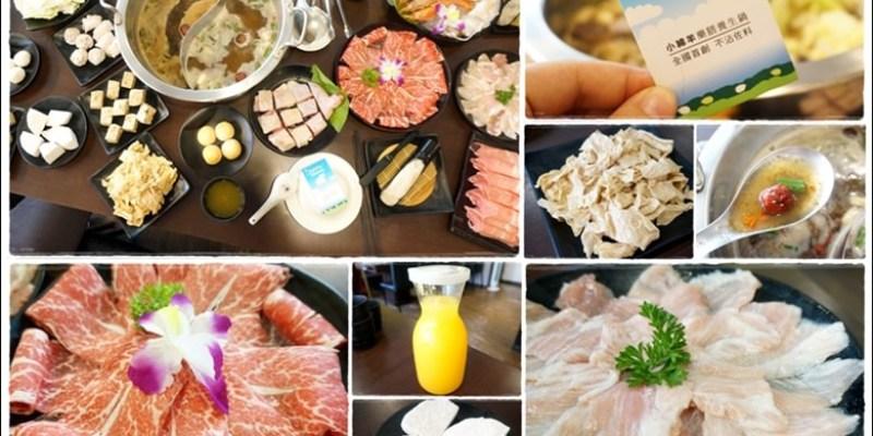 【美食♔台南中西區】小綿羊藥膳養生鍋(台南海安店)。全國首創不沾佐料的鍋物!溫和無負擔,單吃原味也很讚。鄰近海安藝術街、神農街、水仙宮市場
