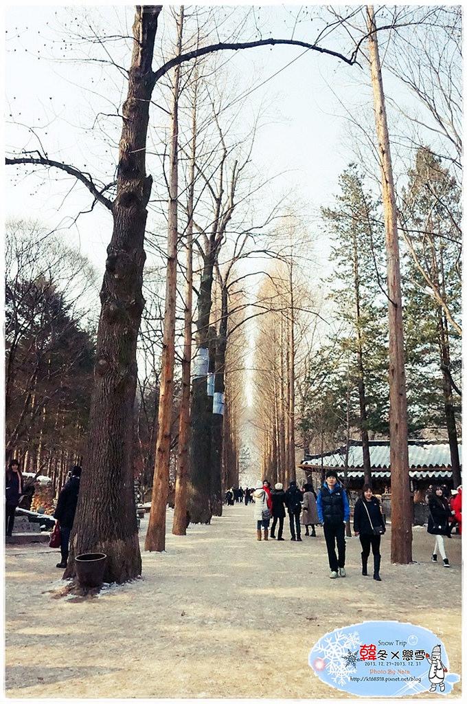 【旅行✈KOREA】2013韓冬戀雪×首爾Snow Trip*第一部追的韓劇「冬季戀歌」,我終於來拉!南怡島雪景風貌一睹為快~