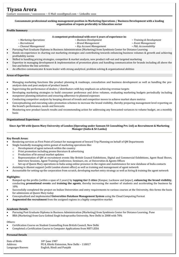 Experience In Marketing Resume Marketing Resume Format Marketing Executive Resume Sample
