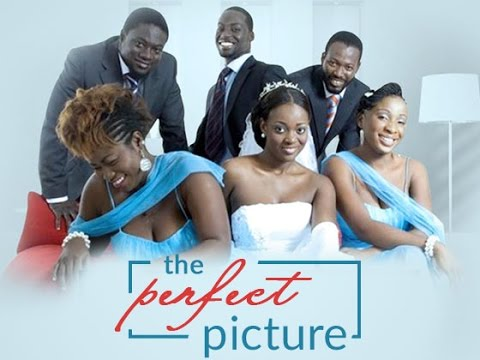 movie the perfect picture