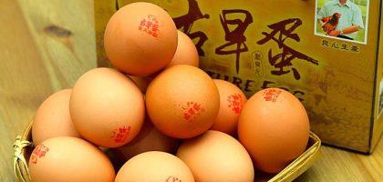 牧大古早蛋 有產銷履歷認證的雞蛋
