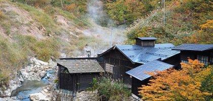 【秋田住宿】大湯溫泉阿部旅館 秋天紅葉季節最值得入住的溫泉旅館