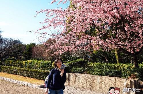 春遊名古屋 賞櫻名所名古屋城