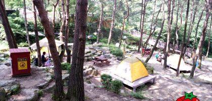 韓國、大邱|香草之丘Hill crest  ,露營、運動探險、遊樂區一次滿足