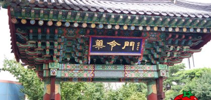 韓國、大邱 藥令韓藥博物館–藥草、藥浴、韓服cosplay,一日大長今之旅。