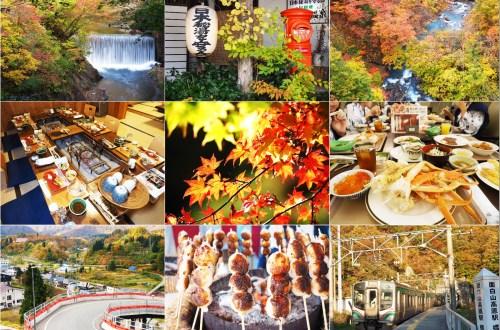 日本東北偽賞楓真購物玩扭蛋之旅(好險搭台灣虎航還可以加買行李)