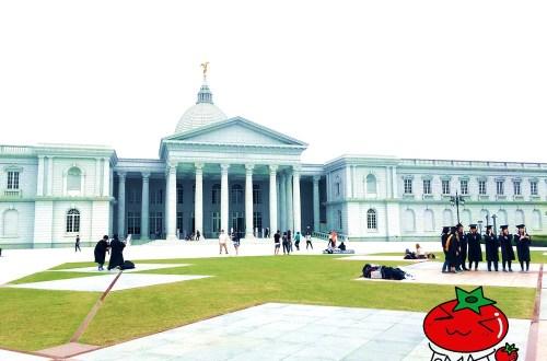 台南奇美博物館|看展覽、踏青、外拍、散步一應具全,充滿藝術與古典的休閒去處