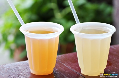 台南、中西區|小公園水果店.夏日清涼的楊桃湯