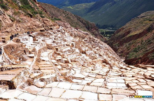 秘魯、庫斯科|高山鹽田Maras.一戶一田的高山奇景