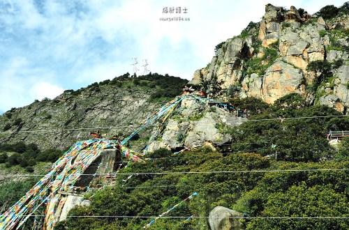 中國、西藏|色季拉山、魯朗林海、巴松措・由林芝一路往拉薩前進