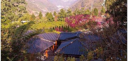 【南投】沙里仙溫泉渡假村│二月來這泡湯兼賞櫻!!