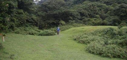 富士坪古道--超級舒服的草皮地毯