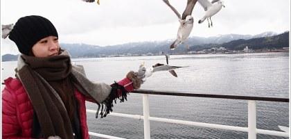 【京都/天橋立】天橋立觀光船 一の宮線 與海鷗同遊共賞宮津灣