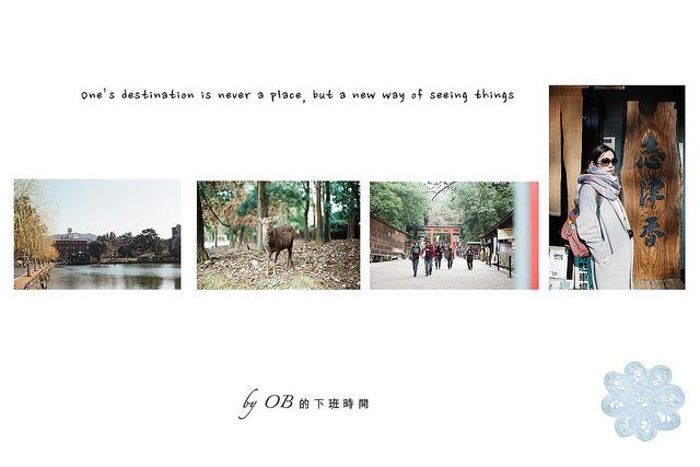  奈良 ✿ 奈良公園、春日大社 & 必吃志津香、大佛布丁、呼吸巧克力