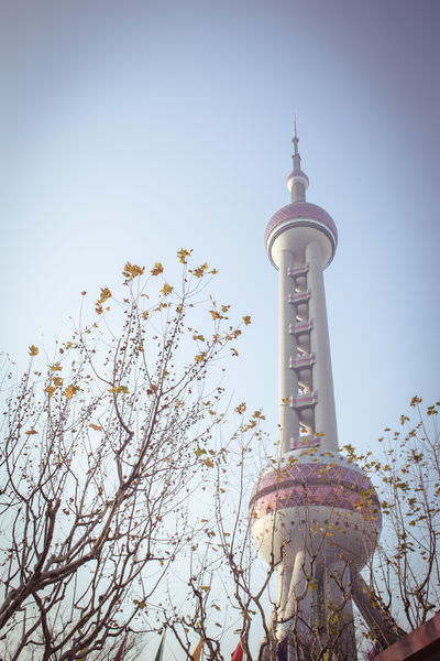 上海 ✿ 豫園、IFC東方明珠塔、京匯坊