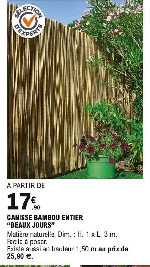 promo canisse bambou entier beaux jours
