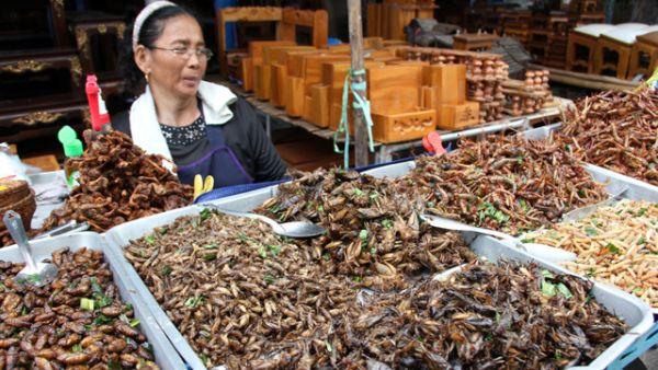Serangga goreng di Thailand (Foto: migrationology)