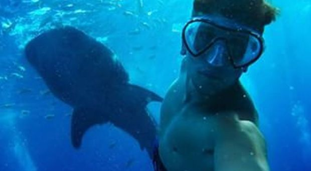 Turis Kanada Selfie dengan Hiu Paus