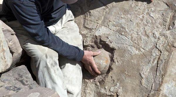 Foto : Obyek yang diduga fosil telur dinosaurus (reuters)
