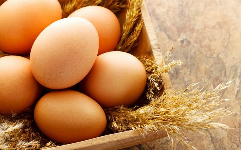 Hasil gambar untuk telur ayam hd