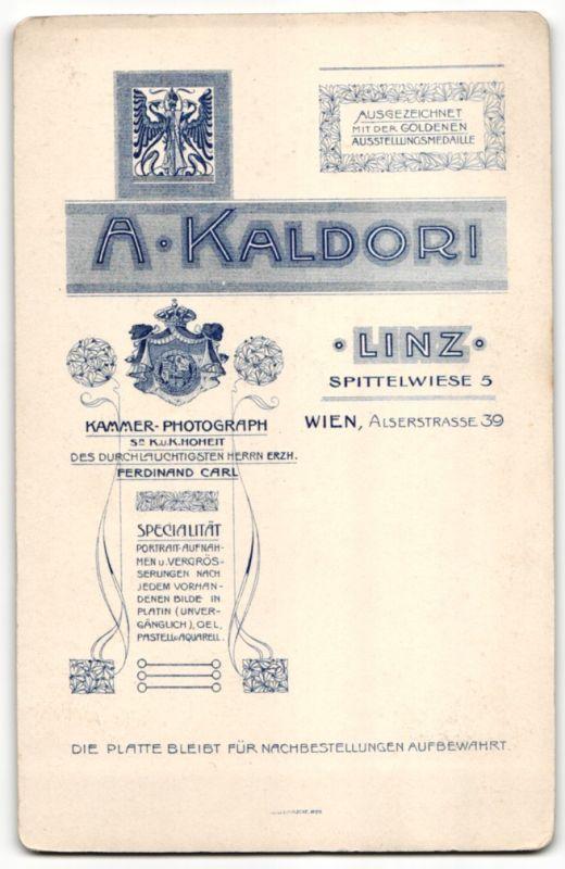 Fotografie A Kaldori Linz Portrait brgerlicher Herr mit Schnauzbart Nr 7569508  oldthing