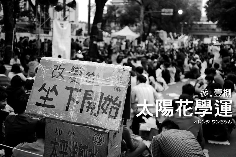 【生活 腳印】叁‧壹捌-太陽花學運/立法院 青島東路:紀錄。