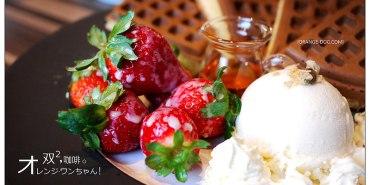 【彰化假日遊記】双双咖啡(雙雙Cafe) DOUBLE2│員林鎮:咖啡館也賣中藥鹹酥雞~當季草莓鬆餅豔紅正甜