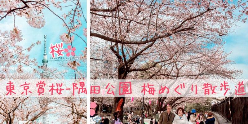 東京自由行►東京賞櫻-隅田公園 梅めぐり散歩道►拍晴空塔的好角落