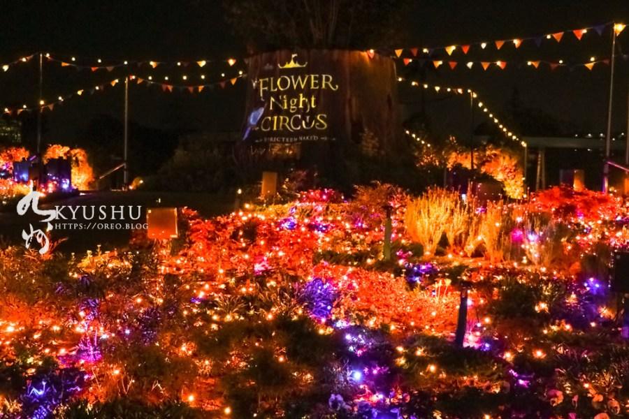 福岡聖誕景點~FLOWER NIGHT CIRCUS 浪漫童話燈光秀/摩天輪/遊樂園